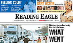 Reading eagle